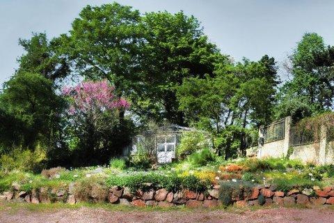 Botanisches Panorama Halle