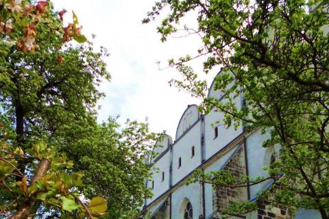 Domgarten Halle